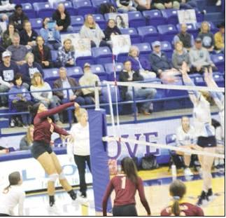 Lady Eagles' season ends in Area round
